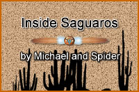 "Inside Saguaros is from Michael and Spider's album ""The Perfume of Creosote: Desert Exotica Part 1""."